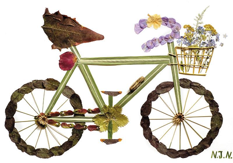 """""""Fahrrad""""-Postkarte aus getrockneten Pflanzenteilen"""