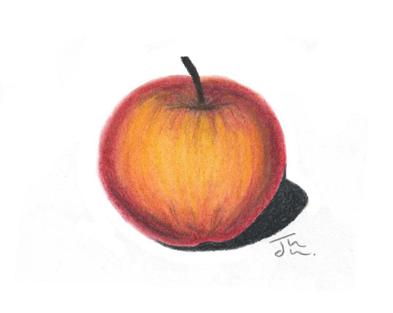 Apfel mit Pastellkreide auf Papier