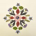 Mandala aus getrockneten Pflanzenteilen